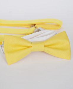 лимонено жълта детска папионка